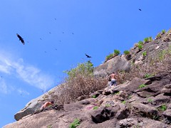Black Vultures Everywhere... ;-S (Leonardo Martins) Tags: ocean blue sea brazil verde green praia beach rio azul stone brasil riodejaneiro mar sand chair bresil areia brasilien exotic tropical vulture pedra pontal blackvulture oceano cadeira brsil recreio urubu sudeste regiosudeste