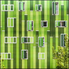 Green house (Maerten Prins) Tags: madrid new windows building tree green leaves modern spain spanje