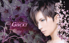 GacktBlackSakura (rwest81) Tags: widescreen wallpapers gackt
