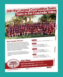 Palm Desert Swim Club - Poster / Flyer