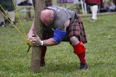 HIGHLAND GAMES_DSC4818 (slimjim340) Tags: games highland kilts scotish caber