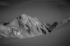 Lyskamm ( paroi Nord ) - Matterhorn # glacier Lys ( Suisse ) (walter buson) Tags: blackandwhite lys switzerlandschweizsuissesvizzera leicam4p lyskamm gruppodelmonterosa matterhorncervincervino alpsalpesalpenalpi mountainsmontagnesbergemontagne
