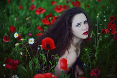 The Escape (LaRuephotography) Tags: flowers red summer portrait green nature beauty field fairytale garden wonder goddess mother curls growth poppy poppies growing lipstick poppys larue