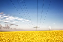 Stromtrasse (dubdream) Tags: sky cloud field germany landscape nikon ngc powerline hdr windturbine schleswigholstein rapeseed colorimage d7100