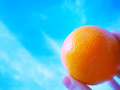 The world is in your hands! Hold it, dont drop it! (ara) Tags: sky orange nature fruit canon environmental fruta cielo organic naranja canonpowershota3200is
