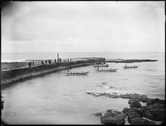 The Pier, Norfolk Island (Powerhouse Museum Collection) Tags: boats rowing powerhousemuseum woodenboats xmlns:dc=httppurlorgdcelements11 dc:identifier=httpwwwpowerhousemuseumcomcollectiondatabaseirn27723