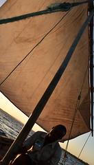 Return voyage from Kilwa Kisiwani to Kilwa Masoko by wooden dhow (6) (Prof. Mortel) Tags: tanzania dhow kilwakisiwani kilwamasoko