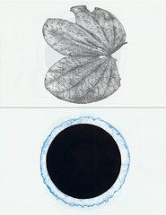 Fold Book Project 2 pages Arenys de Munt #3 (Frances Valesco) Tags: francesvalesco frances valesco nature print printmaking paper multiple metaphor printmaker printmakers prontoplate lithograph lithography reliefprint book bookpages leaf
