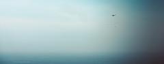 Forest Fire Helicopter (_donaldphung) Tags: twins peak twinspeak bixbybridge pointreyestreetunnel elcpitan pfeifferbeach