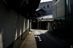 Alley/one-way (yasu19_67) Tags: alley sunlight shadow morning empty atmosphere photooftheday filmlook filmlike digitaleffects sony7ilce7 schneiderrolleislxenon50mmf18 50mm xequals xequalscolornegativefilms osaka japan