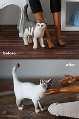 ooak schleich cat (photos4dreams) Tags: thesiamesecatp4d schleich cat ooak toy plastic spielzeug plastik photos4dreams p4d photos4dreamz photo katze siam siamkatze repaint custom