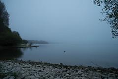 16_09_25_Herbst am Bodensee-8.jpg (werwen01) Tags: morgenstunde jahreszeit friedrichshafen orte bodensee herbst ereignisse ostufer