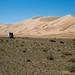 80km ao lado das imensas dunas