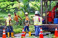 Foreign Workers in Singapore (Lane Sixty...) Tags: foreign workers roadworks streetphotography lanesixty outdoorphotography indian bangladeshi