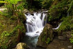 IMG_0535.jpg (ina070) Tags: ilan mountain outdoor stone waterfall