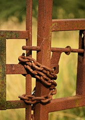 August 16 Field 6 (Lostash) Tags: nature uk leicestershire countryside fields farmland wild metal gate fence rust rusty chain locked