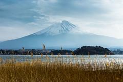 Mt. Fuji (notjustnut) Tags: travel mountain lake japan landscape fuji traveller fujisan ropeway mtfuji kawaguchilake