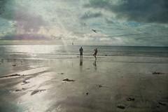 Stormy morning. (sallysue007) Tags: sea fish beach clouds stormy hoek