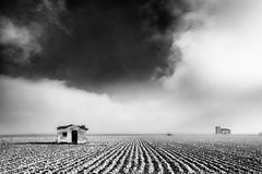 house in the field #9 (icola tramari) Tags: houses bw italy del italia surreal delta case poi surrealistic deserted biancoenero dechirico veneto surrealismo rovigo surreale monocromatico deltadelpo abbandonate polesine surrealt nicolatramarin
