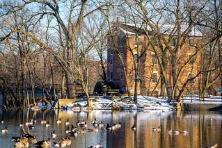 Oak Brook, Ilinois - Graue Mill