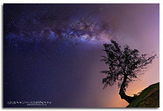 -- Milky Way -- (S S p i X) Tags: nightphotography canon stars landscape star astrophotography astronomy canon5d terengganu milkyway niteshot dungun nitephotography tanjungbidara ef1635 tanjungjara canonef1635 5dmk 5dmk3 ssphotography limsuseng amazedbylite