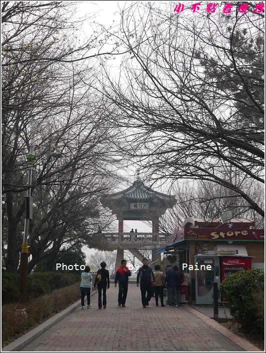0405仁川新浦炸雞 自由公園 中國城 富平地下街 (51).JPG