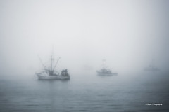 Port San Luis (stephencurtin) Tags: california usa color fog coast harbor san central photograph luis thechallengefactory