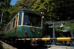 鎌倉 Train  RX1 (mscamera) Tags: train kamakura rx rx1