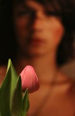 Tulip (Peter Denton) Tags: pink boy flower youth flora tulip malemodel teneues canonefs60mmf28macrousm cultofboys canoneos60d ©peterdenton dominicbrider toyinibidapo