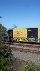 SY2 FAVOR (*SKOP* *AGM*) Tags: train bench favor benching traingraff