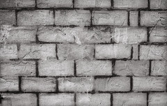 (L. Paul) Tags: old brick wall grey gray dull cracked wallwherethereusedtobebricks