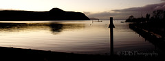 Motuoapa - Lake Taupo and Swans in the Dusk 2 (C & R Driver-Burgess) Tags: swans swimming silhouette caldera dusk evening twilight reflection ripples reeds post pole sign dark hills lake shore