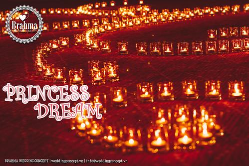 Braham-Wedding-Concept-Portfolio-Princess-Dream-1920x1280-35