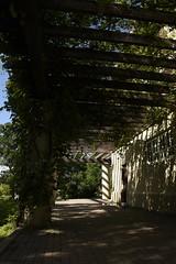 _DSC1952 (Alick Boych) Tags: green overhang vines beams shade brick distance winnipeg manitoba canada