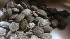 Sweet apricot nut (leaWOWtesla) Tags: sugarnut sweet sugar nut apricot