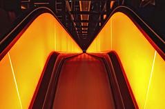 To Hell... (michel1276) Tags: rolltreppe zollverein essen zeche nrw deutschland lights beleuchtung nacht architektur indoor symmetrie