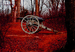 Cumberland Gap cannon-05 (wildrosetn39) Tags: cival war cannon cumberland tennessee