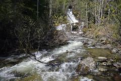 THE TUMBLING OF BIJOUX FALLS  -  (Selected by GETTY IMAGES) (DESPITE STRAIGHT LINES) Tags: nikon d800 nikond800 nikkor2470mm nikon2470mm nikongp1 paulwilliams despitestraightlines flickr gettyimages getty gettyimagesesp despitestraightlinesatgettyimages nature mothernature waterfallwaterfallsfallsbijouxfalls bijouxfallsbritishcolumbia bijouxfallsinbc mackenzie pinepassbc britishcolumbia vanada