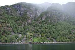 Fjord Farm (laurengolder) Tags: honeymoon norway geirangerfjord geiranger