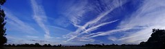 Stunning Shropshire skies (Sundornvic) Tags: sun sky clouds trails lines white blue contrails contrast sunset evening shropshire trees silhouette pentaxart
