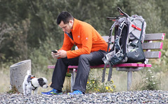 Stopping to Check the Phone (sea turtle) Tags: seattle goldengardens park goldengardenspark beach goldengardensbeach northseattle ballard cellphone dog bench sit guy dude man