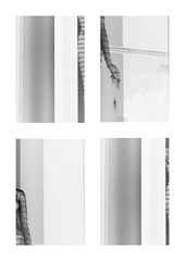 lining (szllva) Tags: collage blackwhite bw shape grey lining