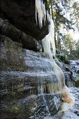 Le milk shake vosgien (Qusoygascoun) Tags: france tourism nature montagne promenade neige paysage arbre sentier fort stalactites vosges insolite glace tourisme randonne caverne sousbois spectaculaire cleurie