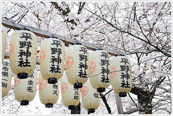 平野神社 (6).jpg