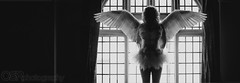 (OSR Photography) Tags: blackandwhite bw window angel dark greek temple wings heaven gothic goth blonde heavenly tutu angelwings greektemple