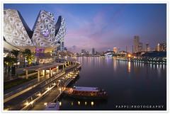Singapores ArtScience Museum (Pappu | Photography Love  :: NIKON) Tags: museum singaporeriver pappu bayfront marinabay artscience d700 pappuphotography 艺术科学博物馆 pappuphotographycom