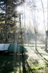 Garden boat 2 (centimeterPhotography) Tags: trees light green grass norway bench boat woods shine forrest country calm calmness lightstreaks