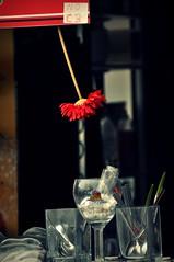 Dites-le avec des fleurs .... (ludii44...) Tags: caf gerbera verres camargue nocb nikond90 ditesleavecdesfleurs cuillres