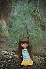 Blythe Sized Pine
