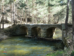 Puente de Valerosa (Historia de Covaleda) Tags: espaa spain fiesta paisaje douro pinos soria historia pinar tradicion duero covaleda